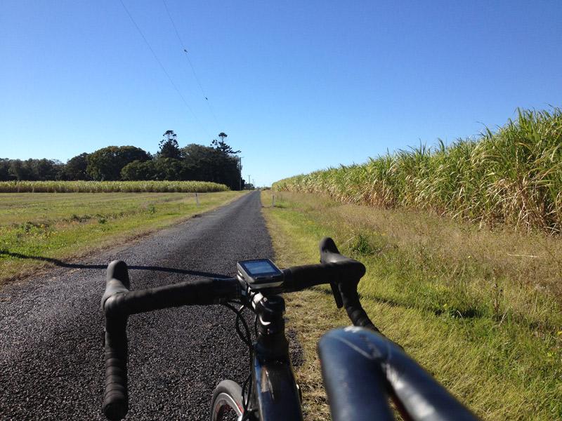 Sworks Roubaix Review